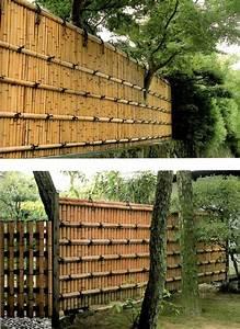 Sichtschutz Durch Pflanzen : bambus vermehren bambus vermehren best 25 pampasgras ~ Sanjose-hotels-ca.com Haus und Dekorationen