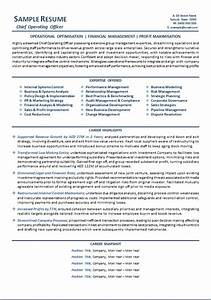 ceo cv template australia templates resume examples With free ceo resume templates