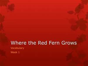 PPT - Where the Red Fern Grows PowerPoint Presentation ...
