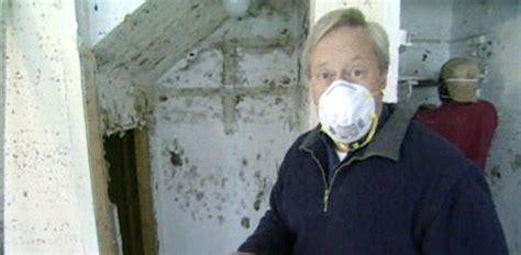prevent  remove mold   home todays
