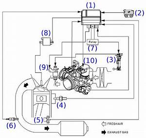 Introduction To Fuel Injection