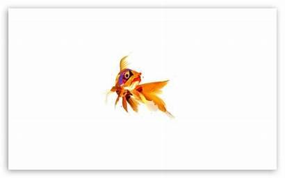 Fish Pixel 4k Ultra Apple Wide Mobile
