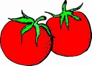 Tomatoes Clip Art at Clker.com - vector clip art online ...