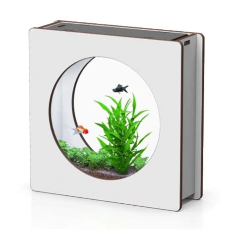 vente en ligne d aquarium aquad 233 co et aquafashion aquarium design