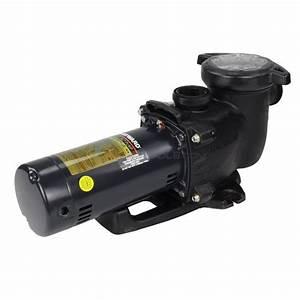 Hayward Max 2 Hp Pump 115  208