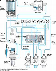 Simplified Internal Schematic Of An Anesthesia Machine  A