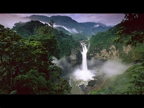 amazonias rainforest hd nature documentary youtube