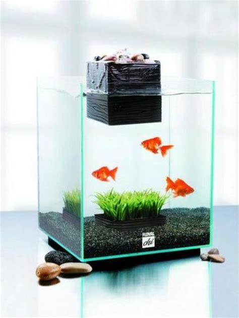 fish tank decoration ideas  kids paperblog