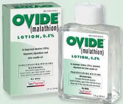 陰蝨 Pthirus pubis (Pubic lice) @ 快樂小藥師 Im pharmacist ... Malathion Skin Lotion