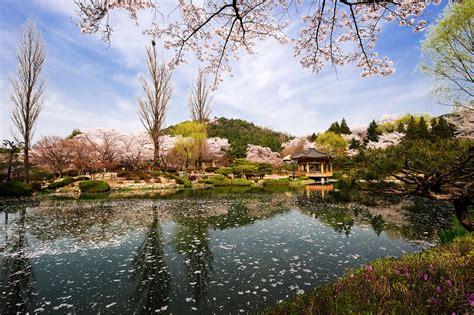 tempat wisata  korea selatan  wajib dikunjungi