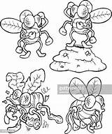 Swatter Fly Illustrations Clipart sketch template