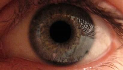 Pupil Dilating Reverse Vision Night Eye Human