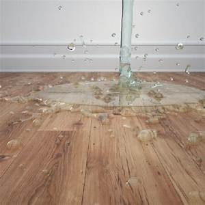 64 best images about repairing hardwood floors on for Removing stains from laminate floors