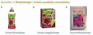 Wann Schneidet Man Rosen Zurück : rosen d ngen wann und womit ~ Orissabook.com Haus und Dekorationen