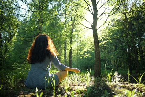 forest bathing       healthy