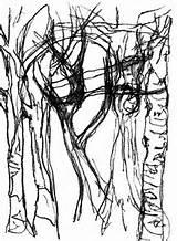Bark Tree Drawing Getdrawings sketch template