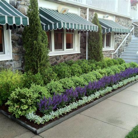 Gartengestaltung Mit Buchsbaum by Clethra Boxwood Lambs Ear Garden Wish List