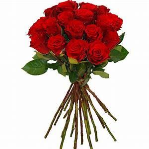 Liebe Ist Wie Eine Blume : blumen zum valentinstag mit dem blumenversand flowerdreams ~ Whattoseeinmadrid.com Haus und Dekorationen