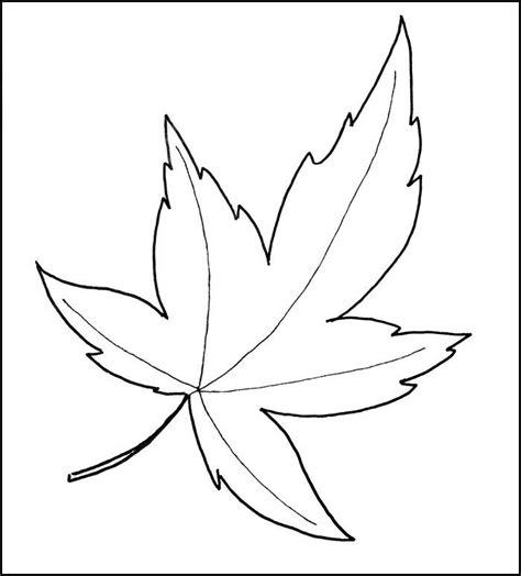 leaf template printable leaf templates  premium
