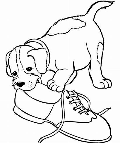 Coloring Ausmalbilder Puppy Dog Shoe Hunde Bite