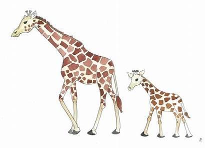 Giraffe Drawing Mother Clipart Mom Easy Tattoos