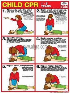 7 Best Images About First Aid On Pinterest