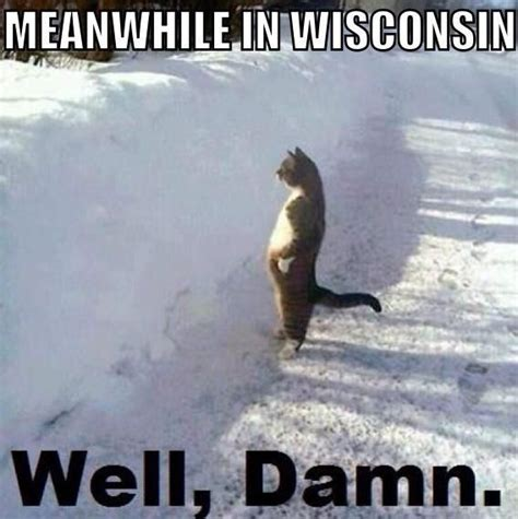Wisconsin Meme - 110 best winter in wisconsin images on pinterest wisconsin forests and funny stuff