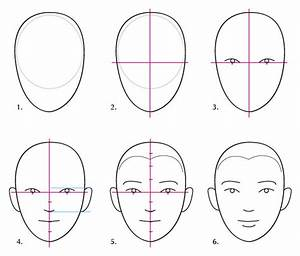 human face proportions Gallery