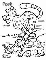 Coloring Early Really Slow Fast Books Giant Activity sketch template