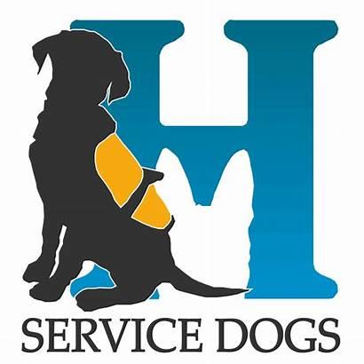 Service Dog Dogs Training Canine Highland Highlandcanine