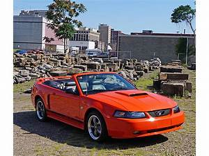 2004 Ford Mustang GT for Sale   ClassicCars.com   CC-998192