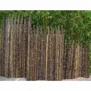 Haie Naturelle Brise Vue : 17 meilleures id es propos de haie bambou sur pinterest ~ Premium-room.com Idées de Décoration