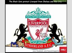 CartoonThe Black Cats protect Liverpool from Chelsea