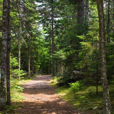 Trails - Chippewa national forest