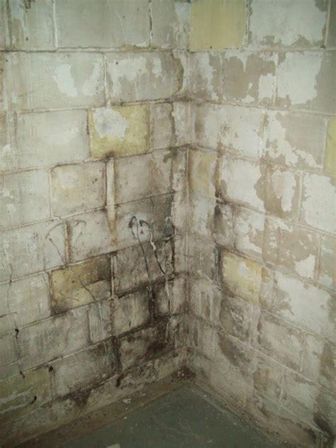 Bad Cinder Block Walls In Basement. Basement Bunkers. Leaking Crack In Basement Wall. Basement Bar Construction. Basement Entrances. Basement Window Well Covers Metal. How To Reduce Radon Gas In Basement. One Story House Plans With Walkout Basement. 70s Basement