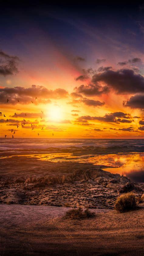 Wallpaper Sunset Birds Clouds Hd 4k Nature 3893