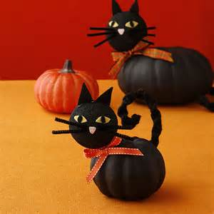 is pumpkin for cats cat pumpkins allyou