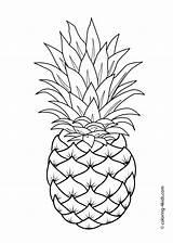 Pineapple Outline Drawing Coloring Getdrawings sketch template
