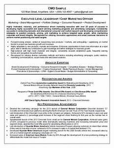 Chief Marketing Officer  Cmo  Resume