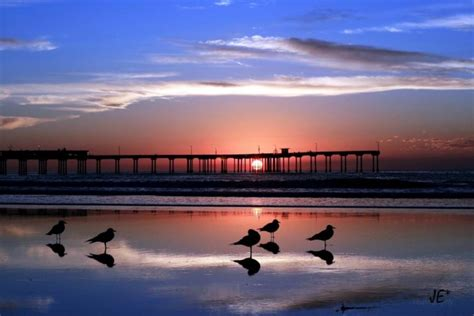 Best Places For San Diego Sunset Fly Rides