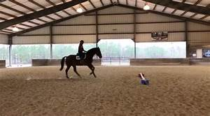 Two New #GOTD Exercises with Laine Ashker | Eventing ...