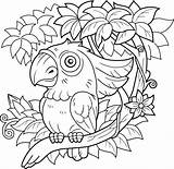 Parrot Vector Coloring Kaketoe Papegaai Cockatoo Pappagallo Sitting Branch Freepik Funny Loro Premium Colorare Malbuch Zittend Een Cacatua Niederlassung Sitzt sketch template