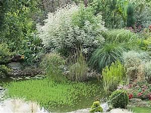 Refaire Son Jardin Gratuitement : humidit au jardin comment en tirer profit ~ Premium-room.com Idées de Décoration