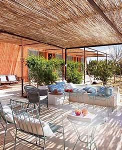 Bambou Brise Vue : brise vue avec des plantes pour plus d intimit dans le jardin ~ Premium-room.com Idées de Décoration