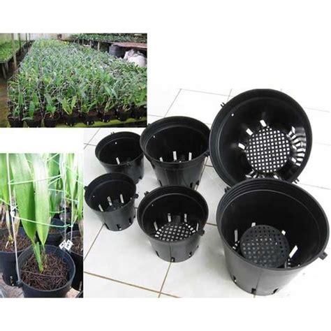 Pot Anggrek Plastik pot anggrek taiwan oleh glos green leaves orchid salatiga