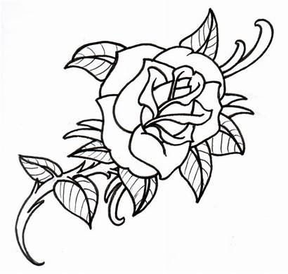 Outline Rose Drawings Drawing Outlines Tattoo Clipart