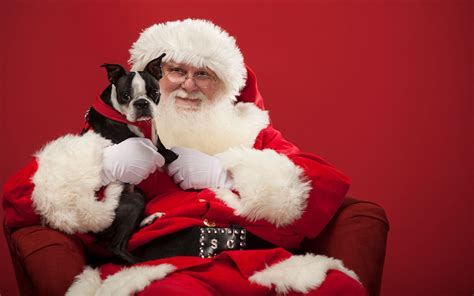 places offering pet   santa  holiday