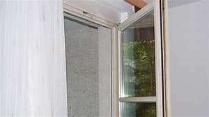 Schwarzer Schimmel Fenster : schimmel vermeiden was tun um schimmelbildung zu verhindern tipps und hinweise vom maler ~ Whattoseeinmadrid.com Haus und Dekorationen