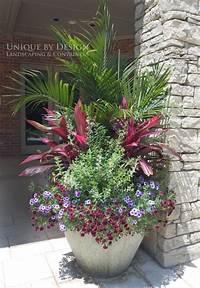 best patio plants design ideas 25 Ideas of Outdoor Plants In Pots Ideas