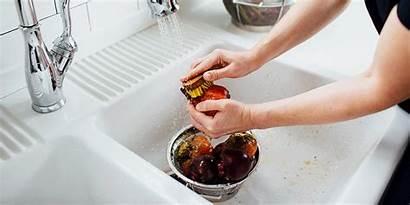 Scrub Prepare Dish Cook Works Recipe Beets